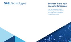 BUSINESS IN THE NEW ECONOMY LANDSCAPE